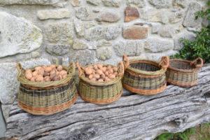 walnut basket